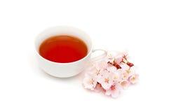 Sakura tea Stock Photo