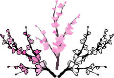 Sakura, three variants. Color, color with a stroke, black and white stencil Stock Photography