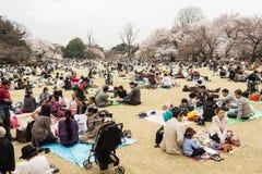 Sakura in Tokyo, Japan Stock Photo