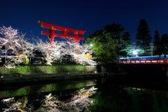 Sakura and torii Stock Photos