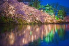 Sakura träd med flodreflexion på natten Royaltyfria Bilder