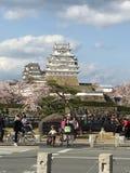 Sakura träd med molnhimmel på den Himeji slotten royaltyfri foto
