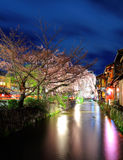 Sakura and traditional house in kyoto Stock Images