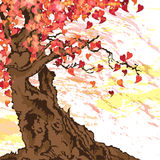 Sakura tree. In autumn with heart shaped leaves Royalty Free Stock Photography