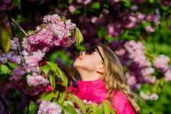 Sakura tree blooming. Small girl child in spring flower bloom. Enjoy smell of tender bloom. Sakura flower concept stock image
