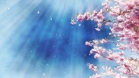 Sakura Tree And Blue Sky libre illustration