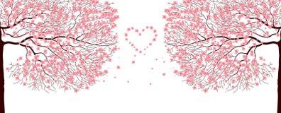 Sakura trees. Illustration of sakura trees.Vector love background Stock Image