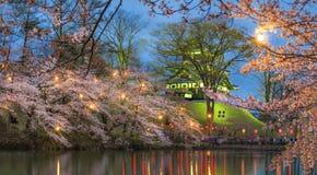 Sakura trees at Takada Castle Ruins. Night Cherry blossom festival at Takada castle ruins, Joetsumyoko, Nagano, Japan stock images