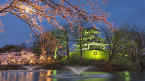 Sakura trees at Takada Castle Ruins. Night Cherry blossom festival at Takada castle ruins, Joetsumyoko, Nagano, Japan stock photography