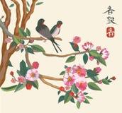 Sakura, uccello, sorgente, cartolina. Fotografie Stock Libere da Diritti