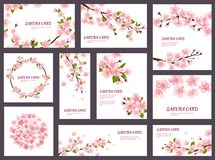 Sakura vector blossom cherry greeting cards with spring pink blooming flowers illustration japanese set of wedding. Invitation flowering template decoration stock illustration