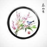 Sakura w okwitnięciu, bambusa ptaku, gałęziastym i błękitnym royalty ilustracja