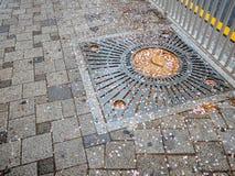 Sakura więdnął na spaceru sposobu abstrakta uczuciu Obraz Royalty Free