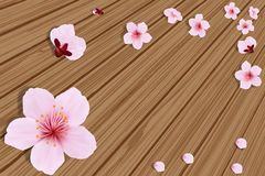 Sakura on  wooden boards 2 Stock Photography