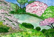 Sakura wordt weerspiegeld in water, Traditionele Japanse tuin met kersenbomen en een vijver, waterverfillustratie royalty-vrije illustratie
