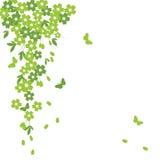 Sakura y mariposa ilustración del vector