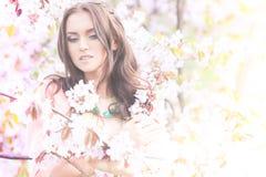 Sakura. Young brunette lady in flowers of sakura stock photography