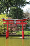Sakurabloesem bij de Japanse Tuin in de Botanische Tuin van Brooklyn Royalty-vrije Stock Afbeeldingen