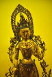 Sakyamuni royalty-vrije stock foto's