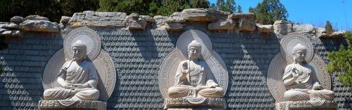 Sakyamuni, Amitabha, Medicine Guru Buddha. Royalty Free Stock Photography