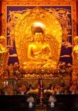 Sakyamuni Buddha Fotografia de Stock Royalty Free