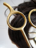 Salão de beleza 3 do cabelo imagem de stock