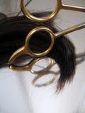 Salão de beleza 5 do cabelo Fotografia de Stock Royalty Free