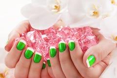 Salão de beleza bonito do prego do tratamento de mãos Imagem de Stock