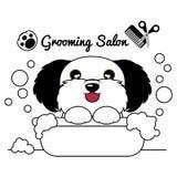 Salão de beleza do cão da preparação Fotos de Stock Royalty Free