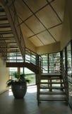 Salón extraño con escaleras y una planta en conserva foto de archivo libre de regalías
