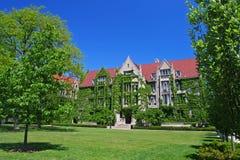 Salões folheados da hera na Universidade de Chicago imagem de stock