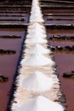 sal Imagens de Stock