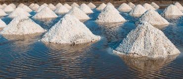 Sal das pilhas salinas em Tailândia Foto de Stock Royalty Free