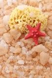 Sal de baño, esponja y estrellas de mar Imágenes de archivo libres de regalías
