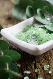 Sal de banho do eucalipto Imagens de Stock