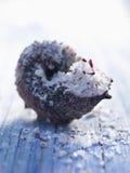 Sal del mar de Fleur de sel en un shell Fotografía de archivo libre de regalías