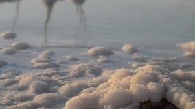 Sal del mar muerto almacen de video