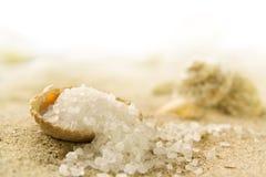 Sal do mar Foto de Stock Royalty Free