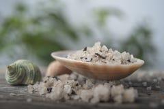 Sal do mar em uma concha do mar Imagens de Stock