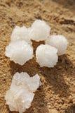 Sal do mar inoperante Fotos de Stock Royalty Free