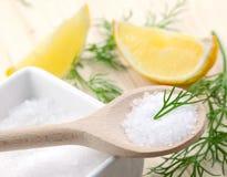 Sal, eneldo y limón Fotografía de archivo