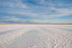 Sal liso em Atacama fotografia de stock royalty free