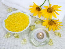 Sal marina para un aromatherapy Imagen de archivo
