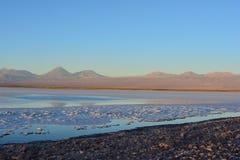 Sal plana y la Laguna Tebinquiche en el desierto de Atacama, Chile Foto de archivo