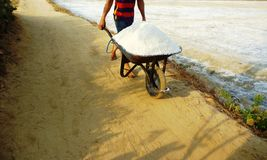 Sal que cultiva en la costa este de Rembang foto de archivo libre de regalías