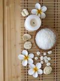 Sal, shell e flores do tiare Fotos de Stock Royalty Free