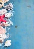 Sal y cáscaras del mar del OS de la frontera Foto de archivo libre de regalías