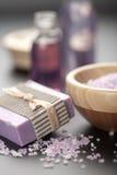 Sal y jabón herbarios Fotografía de archivo