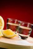 Sal y limón - ascendente cercano del Tequila de la vertical Fotos de archivo