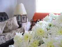 Sala de estar agradable 1 fotos de archivo libres de regalías